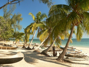 beach_in_madagascar_with_pirogues_and_palm_trees